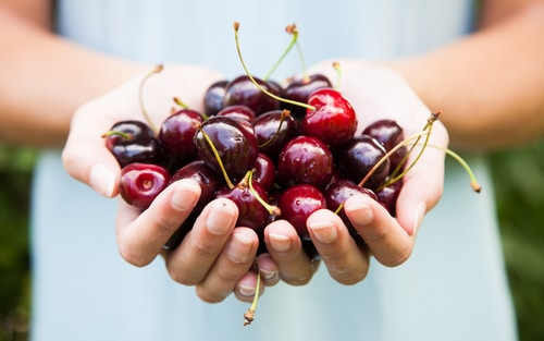 Cherries, Gout and Uric Acid