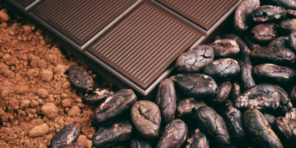 Gout and Chocolate Cocoa