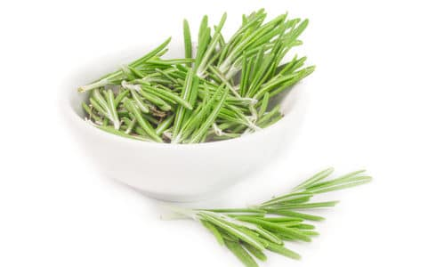 Rosemary and Gout