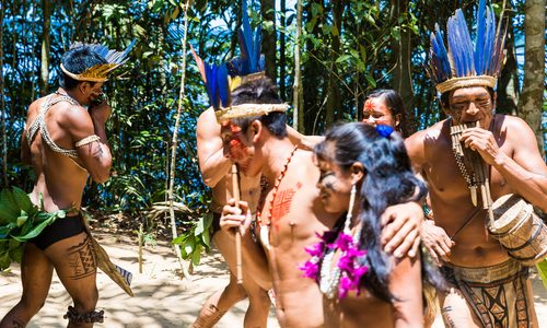 Tsimane Tribe and Gout