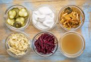 Fermented Food and Gout